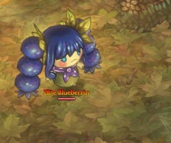Blueberrin